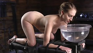Sensual BDSM with obedient Cadence Lux